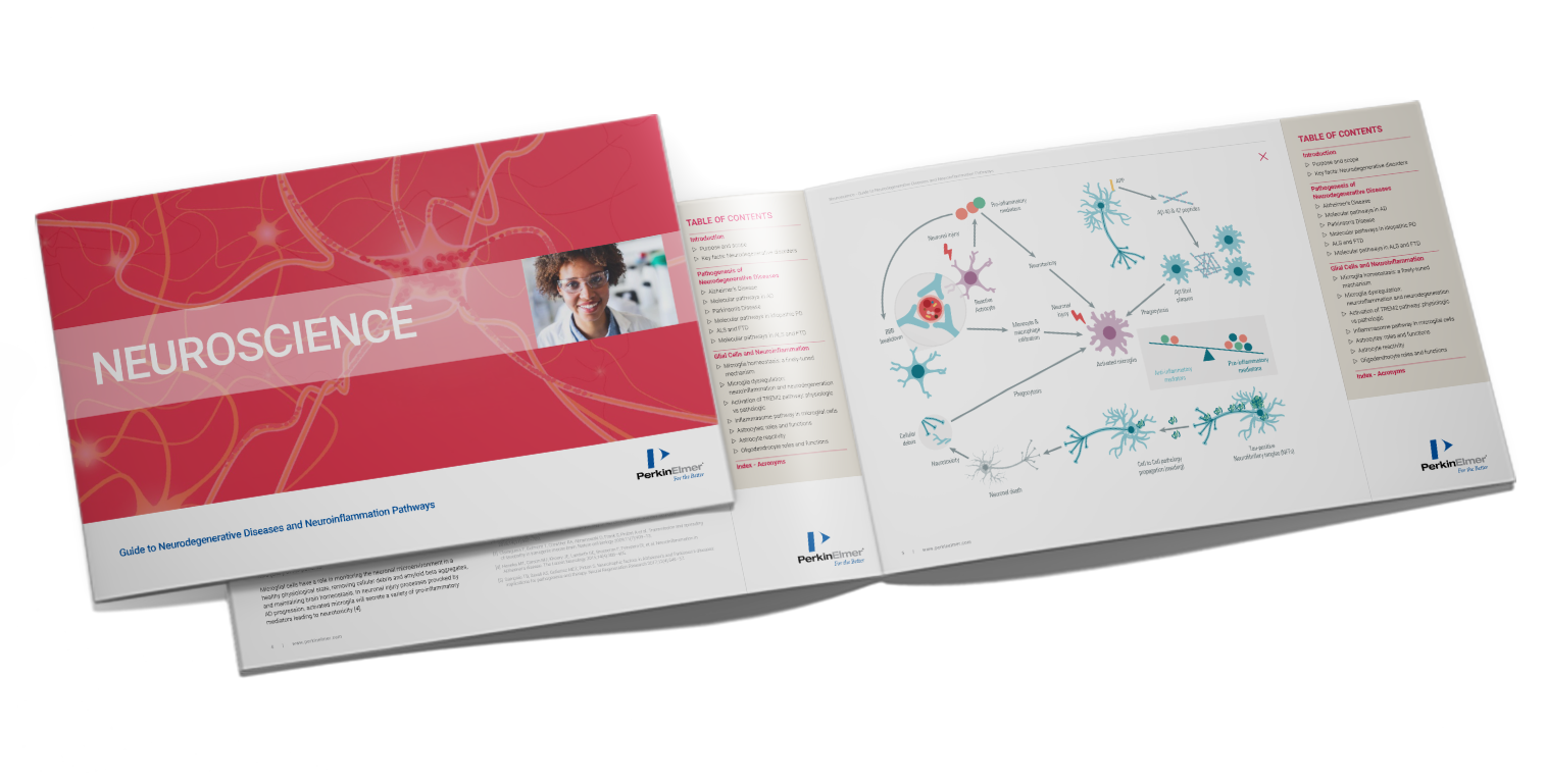 Download your guide about neurodegenerative diseases and neuroinflammation pathways