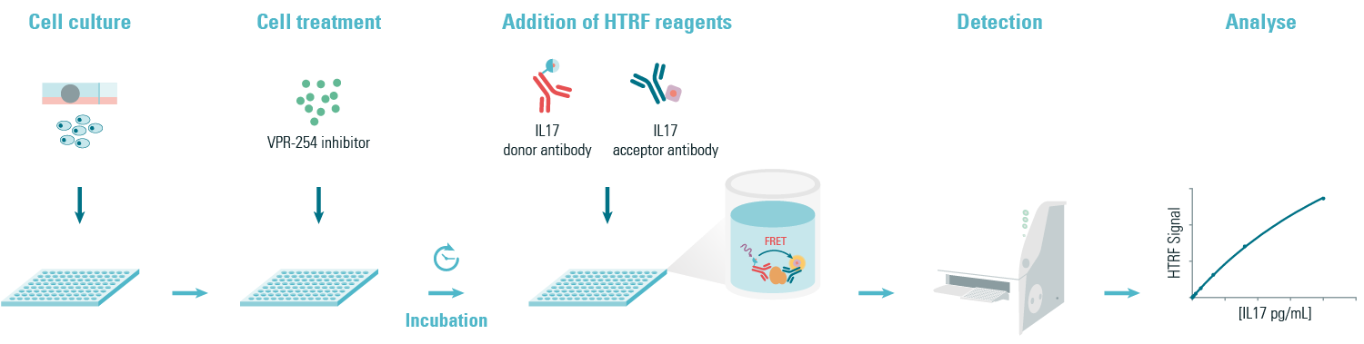 Principle of the HTRF IL17 sandwich assay